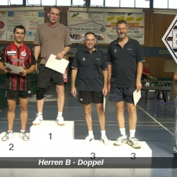 VM2009-HerrenB-Doppel